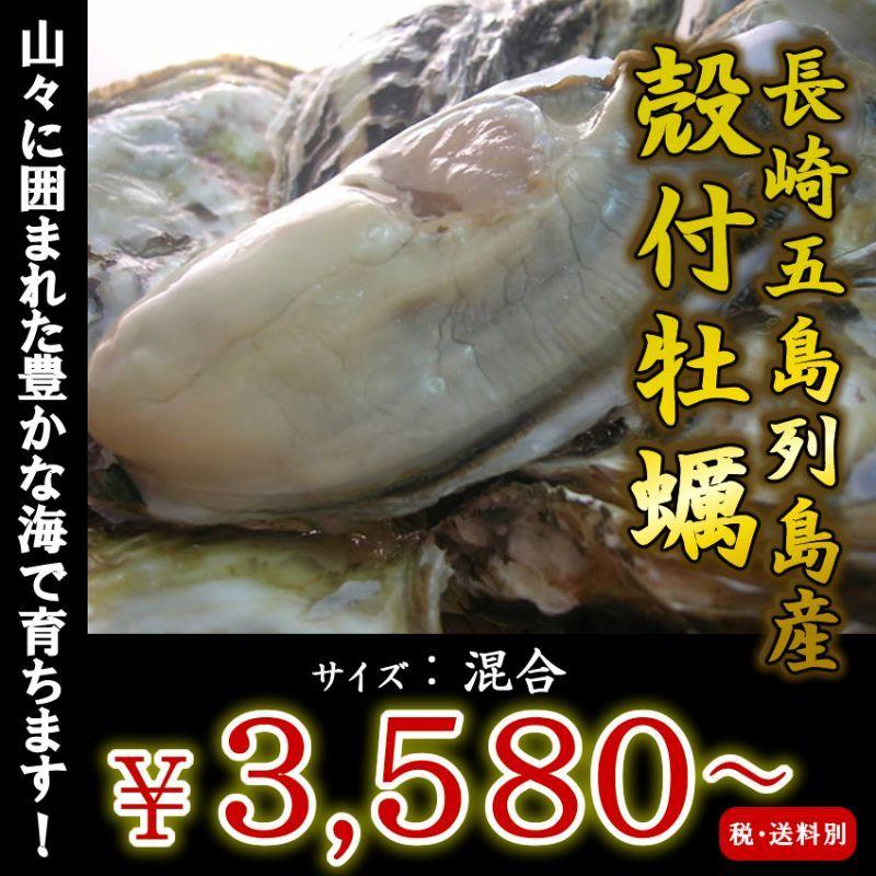画像1: 【お急ぎ便】 長崎五島列島産 殻付牡蠣 (配送地域限定) (1)
