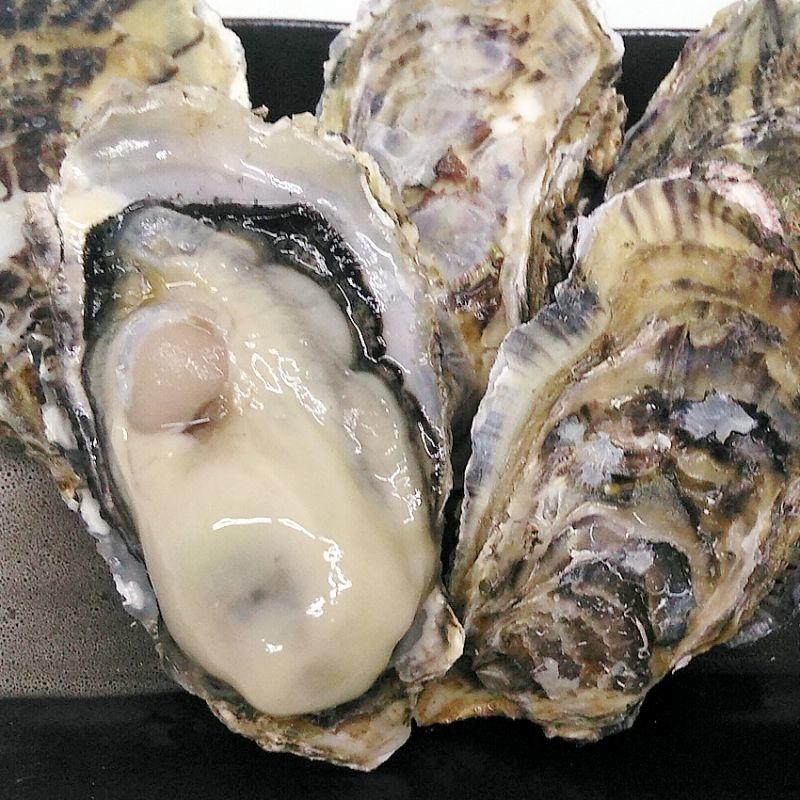画像1: 福岡糸島産 真牡蠣と岩牡蠣のお得セット (1)