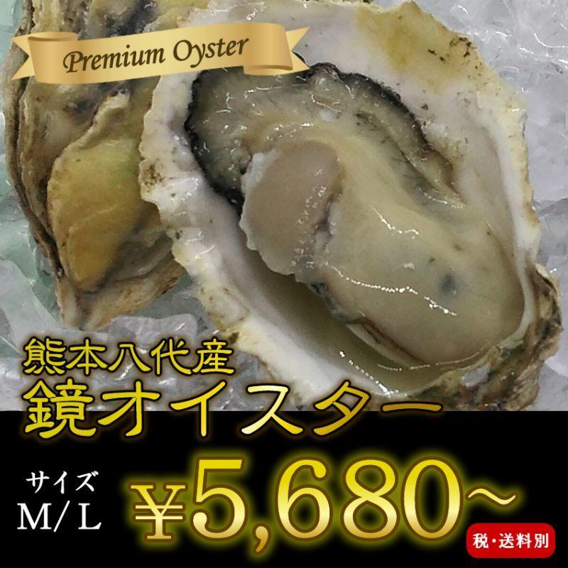 画像1: 熊本八代産 鏡オイスター (1)