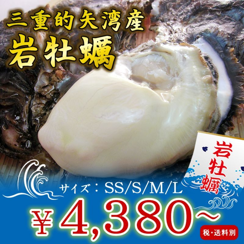 的矢湾三ケ所産岩牡蠣