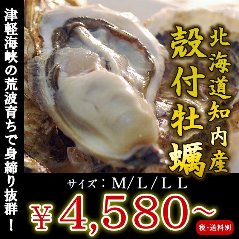 画像1: 北海道知内産 殻付牡蠣 (1)