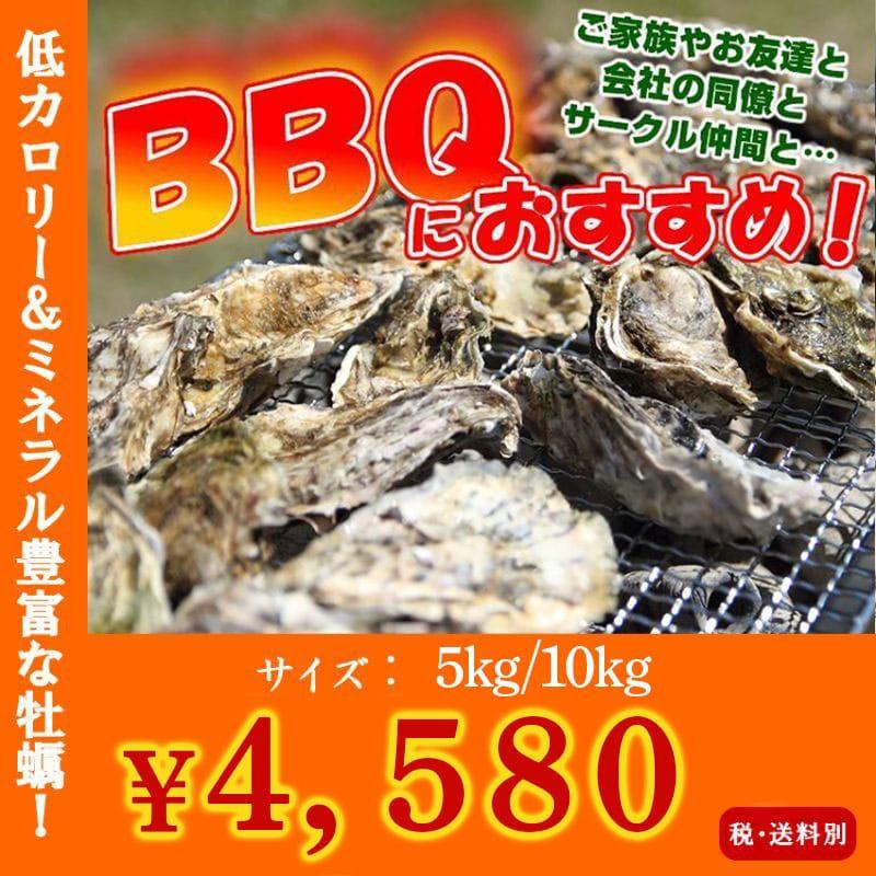 画像1: 三陸産志津川産 バーベキュー用ふぞろい殻付牡蠣 (1)
