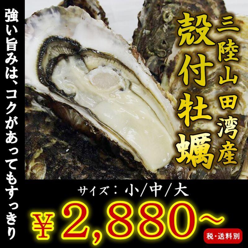 画像1: 【お急ぎ便】三陸山田湾産 殻付牡蠣 (お届け地域限定) (1)